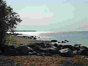 Lester Beach Shoreline-Lake Winnipeg-East Beaches-Cottage Sales-Year round Residences-Homes for Sale-Vacant Lots-Land for Sale-Cottage Rentals-EastShore Realty-Real Estate Agent